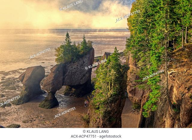 Fog Lifting, Hopewell Rocks, Flowerpots, Sandstone, Hopewell, Bay of Fundy, New Brunswick, Canada