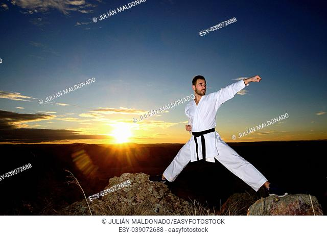 Specialist in martial arts making technical movements