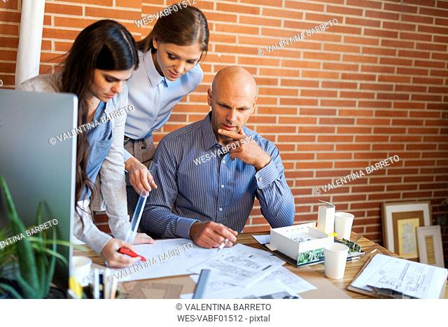 Team of architects working on a project