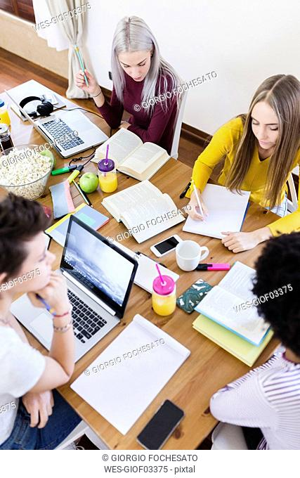 Group of female students working together at table at home