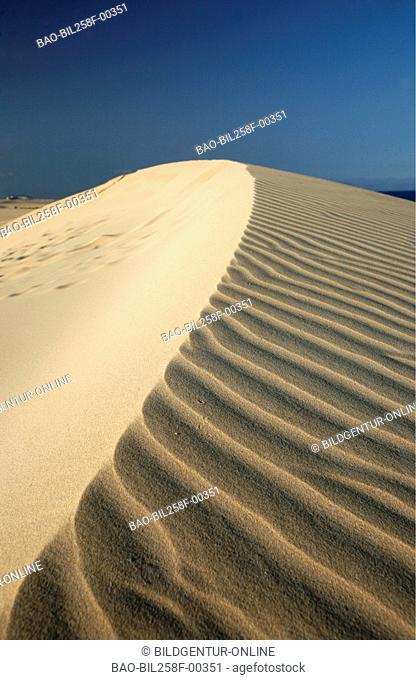 The sandy dunes with Corralejo in the north-east of the island Fuerteventura on the Canary islands in the Atlantic