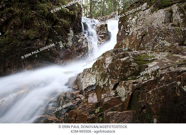 Crawford Notch   Beecher Cascade during the spring months  Located on Crawford Brook next to the  Avalon Path in Bethlehem, New Hampshire USA