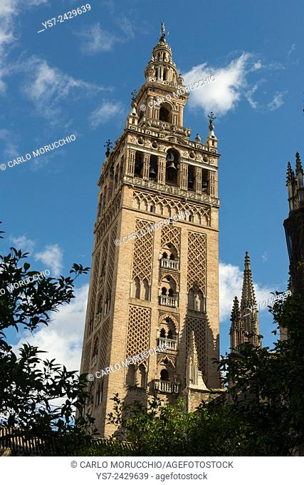 Giralda bell tower, Seville, Andalusia, Spain
