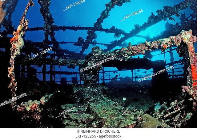Umbria shipwreck, Sudan, Africa, Red Sea, Wingate Reef