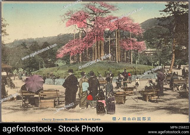 Cherry blossom Maruyama Park at Kyoto. Ueda (Firm : Yokohama, Japan). Pacific pursuits : Postcards Japan - Life. Date Issued: 1900 - 1940 Date Issued: 1907 -...