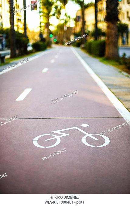 Bike lane on a city boulevard