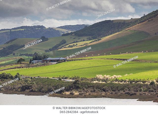 New Zealand, South Island, Southland, The Catlins, Tautuku Bay, landscape