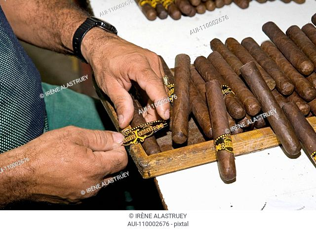 Dominican Republic - Centre - The Cibao - Tobacco Valley - Santiago - Cigar Factory
