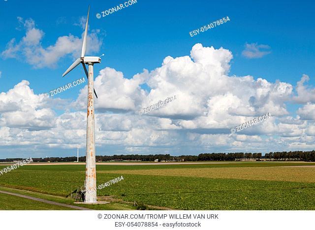 Dutch windturbine in rural landscape of Flevoland