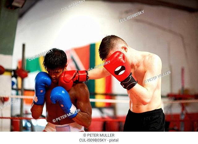 Two boxers sparring in boxing ring
