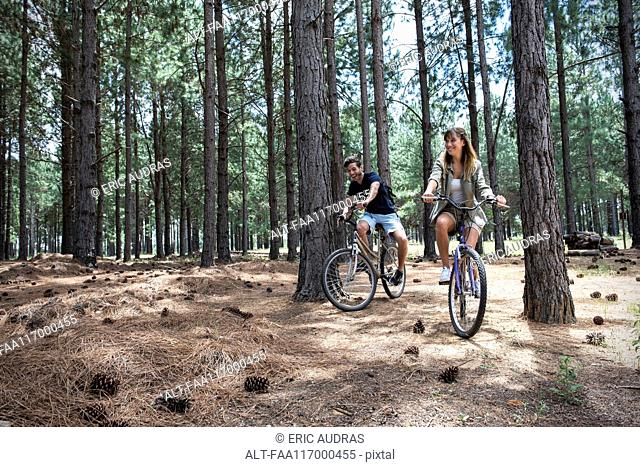 Young couple cycling in pine forest