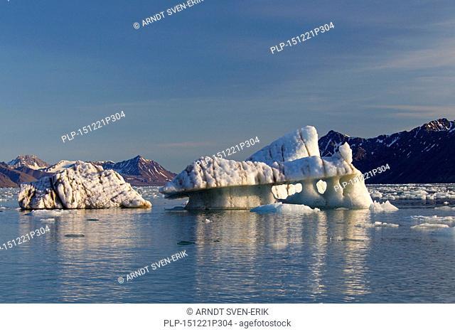 Melting ice floes calved from the Lilliehöökbreen glacier drifting in the Lilliehöökfjorden, fjord branch of Krossfjorden in Albert I Land, Spitsbergen