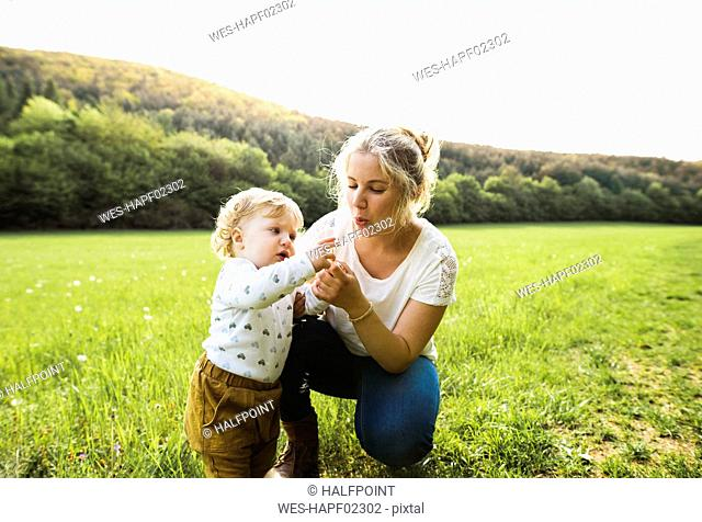 Cute little boy with mother on meadow