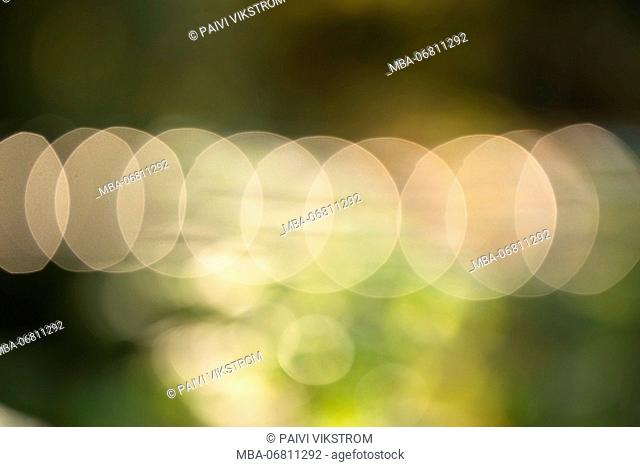 Bokeh, nature light with green background