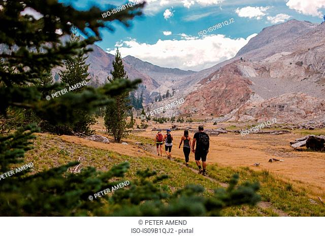 Group of friends hiking along pathway, rear view, Mineral King, Sequoia National Park, California, USA