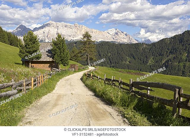 Longiarù, San Martino in Badia, Badia Valley, Dolomites, Bolzano province, South Tyrol, Italy. A footpath with Sasso della Croce in the background