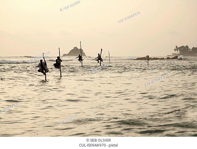 Row of four stilt fishermen, Galle, Sri Lanka