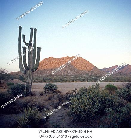 Die Wüstenlandschaft in Arizona, USA 1970er Jahre. The desert landscape of Arizona, US 1970s