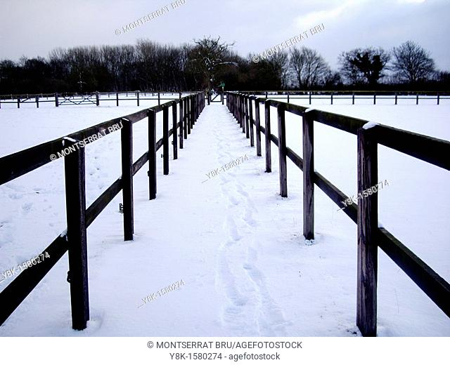 Perspective wooden fences