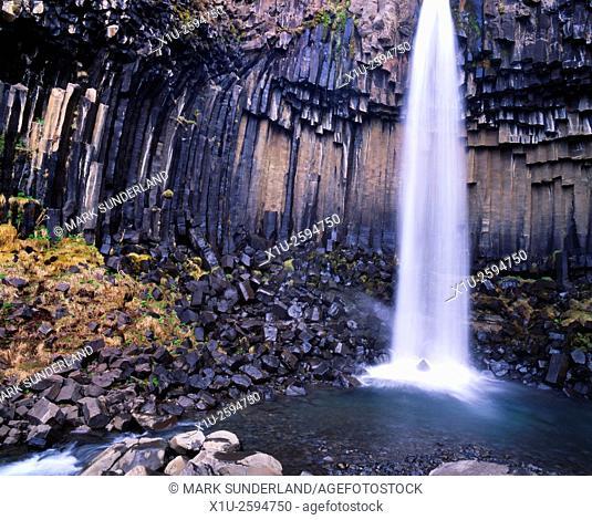 Svartifoss The Black Waterfall in Skaftafell National Park Iceland