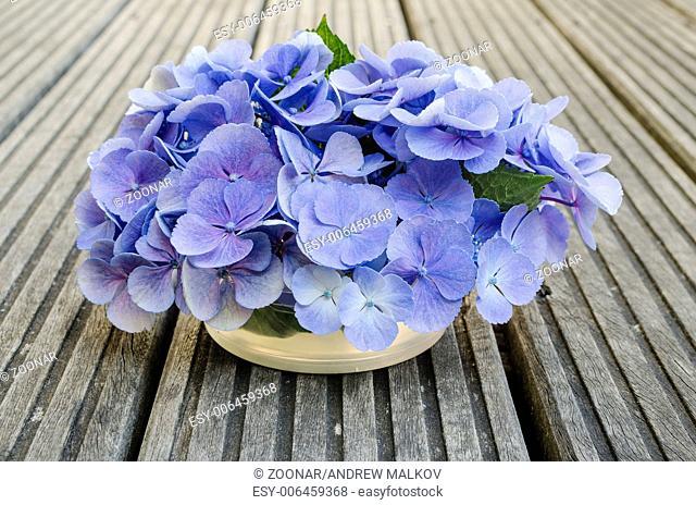 Bouquet of hydrangea on rustic wood