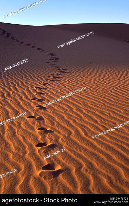 USA, United States of America, Nevada, Death Valley National Park, Mesquite Sand Dunes, Sierra Nevada, California