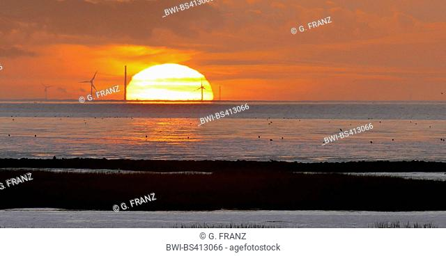 wadden sea near Spieka Neufeld at sunset, Germany, Lower Saxony, Spieka Neufeld