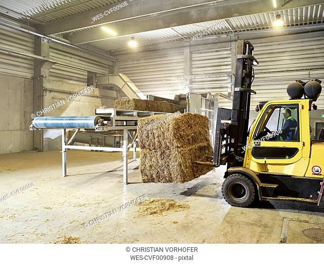 Rumania, woodworking, stacker truck with hay bales