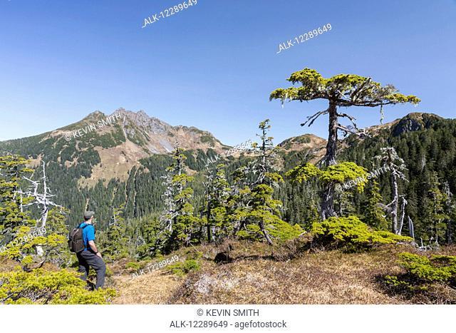 A man hikes along Gavin Hill Ridge on a clear day, Sitka, Southeast Alaska, USA, Summer