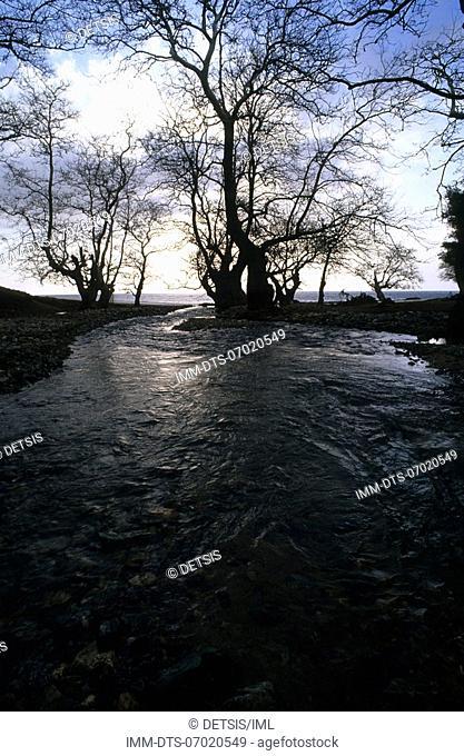 River at east coast near Kipi , Samothrace, N E  Aegean, Greece
