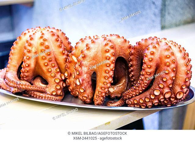 Cooked octopus. Santiago de Compostela. La Coruña, Galicia, España