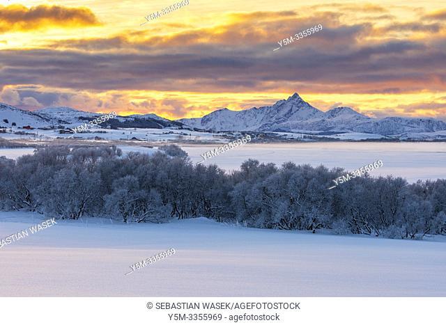 Frozen Ostadvatnet Lake, Nordland, Norway, Europe