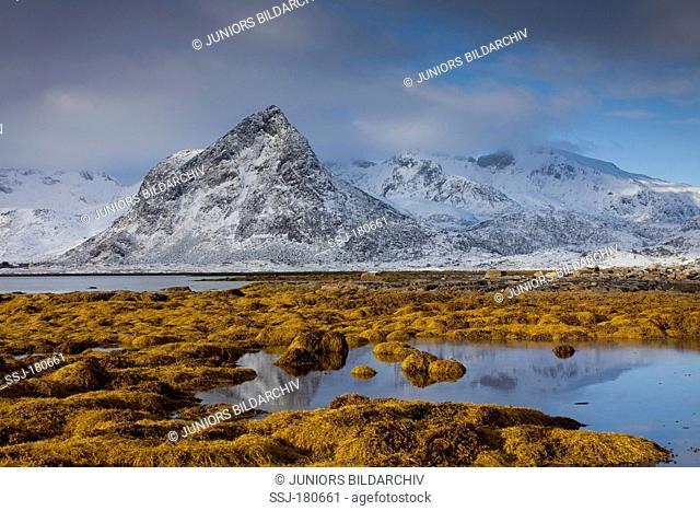 Fjord of Mainesvik, Lofoten Islands