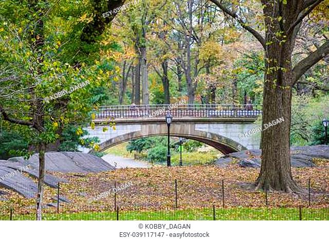 The Central park in New York at autumn