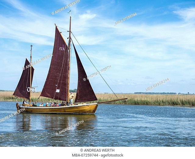 Sailing boat, Barther Bodden, Baltic Sea, peninsula of Fischland-Darss-Zingst, Zingst, Mecklenburg-Vorpommern, Germany