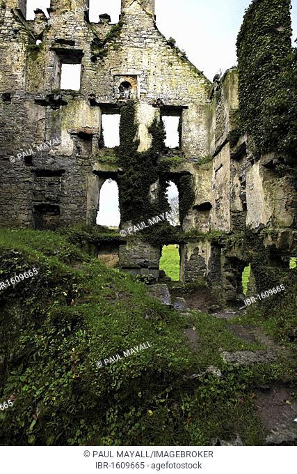 Menlo Castle ruin, County Galway, Republic of Ireland, Europe