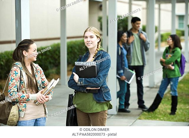 High school students chatting together after school