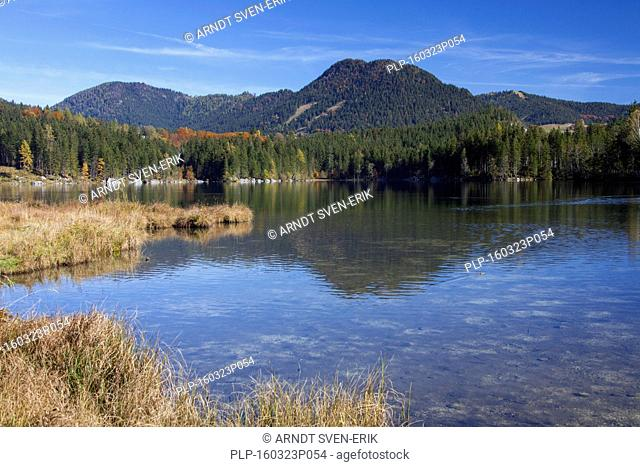 Lake Hintersee in the Bavarian Alps, Berchtesgadener Land, Upper Bavaria, Germany