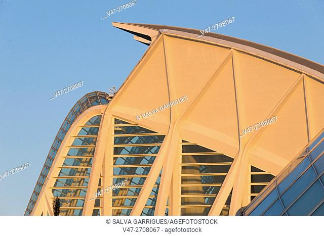 Prince Felipe Museum detail in the City of Arts and Sciences, Valencia, Spain, Europe