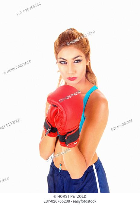 A lovely young woman showing her boxing cloves wearing exercising.clothing, isolated for white background.