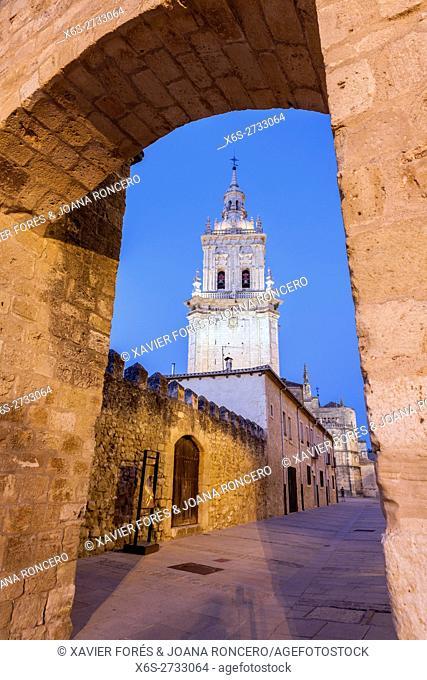 Cathedral of La Asuncion in El Burgo de Osma village, Soria, Spain