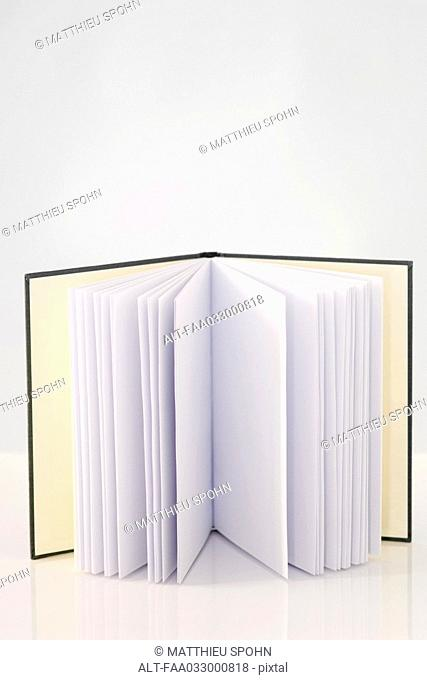 Open book with blank pages, standing up, close-up