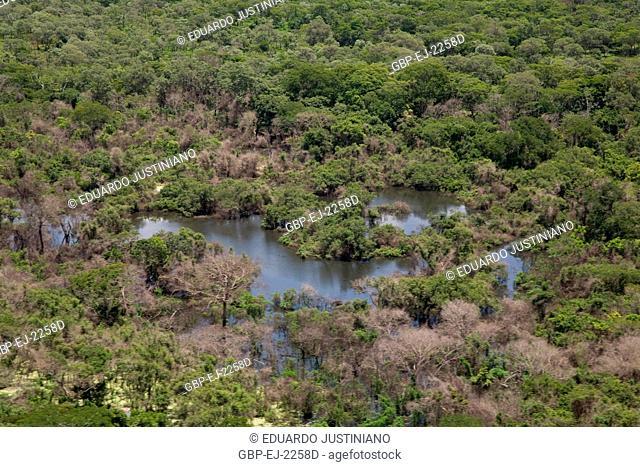 Flooded plain of Miranda River, Miranda, Mato Grosso do Sul, Brazil