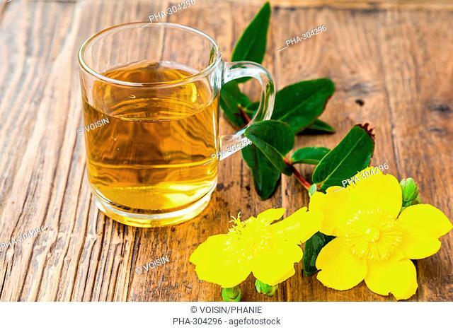 Herbal tea of St. John's wort