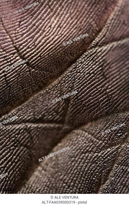 Blackened palm of hand, extreme close-up