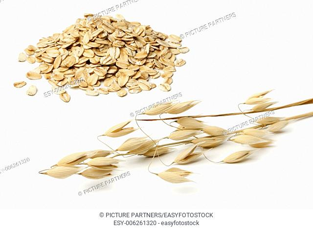 Dried oat and seeds on white background