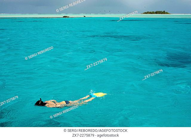 Aitutaki. Cook Island. Polynesia. South Pacific Ocean. Doing snorkeling in the Aitutaki (Lagoon Cruise). The barrier reef that forms the basis of Aitutaki is...