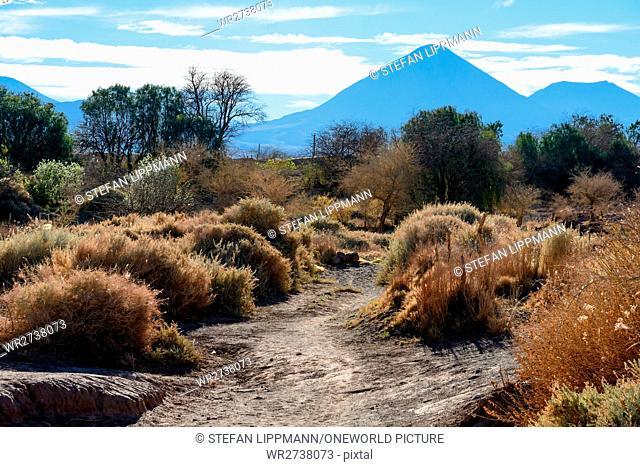 Chile, Regio de Antofagasta, San Pedro de Atacama, The village is located in the Chilean Atacama desert at 2500 m altitude