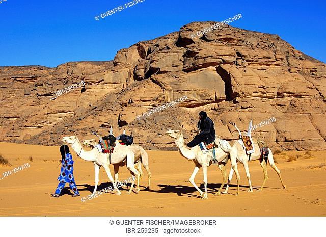 Tuareg with white Mehari riding dromedary, Acacus Mountains, Libya