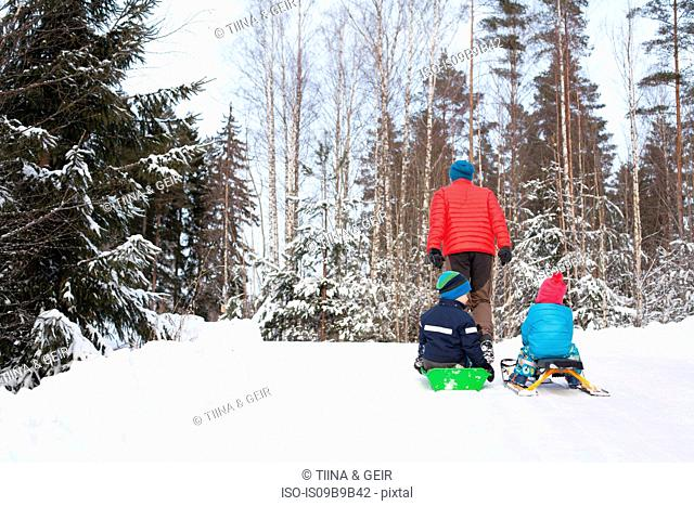 Rear view of man pulling two sons on toboggans through snow covered forest